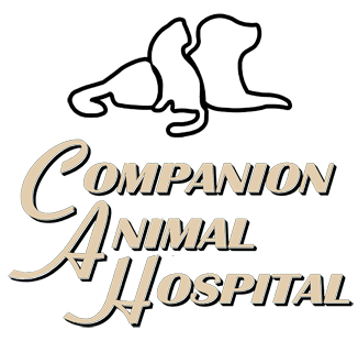 Companion Animal Hospital - Elizabethtown/Mount Joy PA